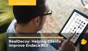 Endeca Factsheet - Image