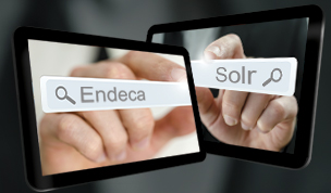 Endeca Search Solr